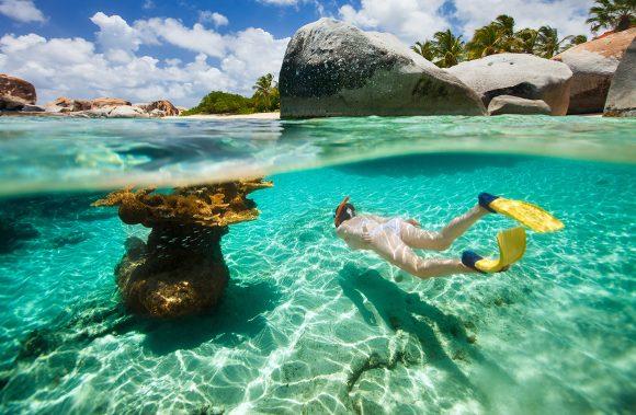 Snorkel Tour in Grand Turk's Coral Reef