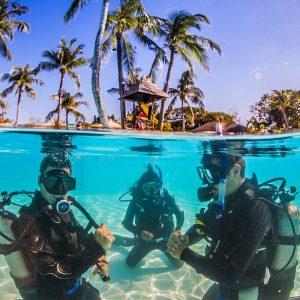 St.Lucia Coral Adventure